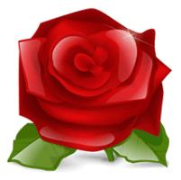 RodonOnAir2 – Λογισμικό Παραγγελιοληψίας Android